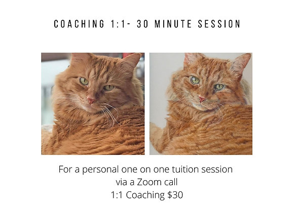 Coaching 1:1 30 minute session