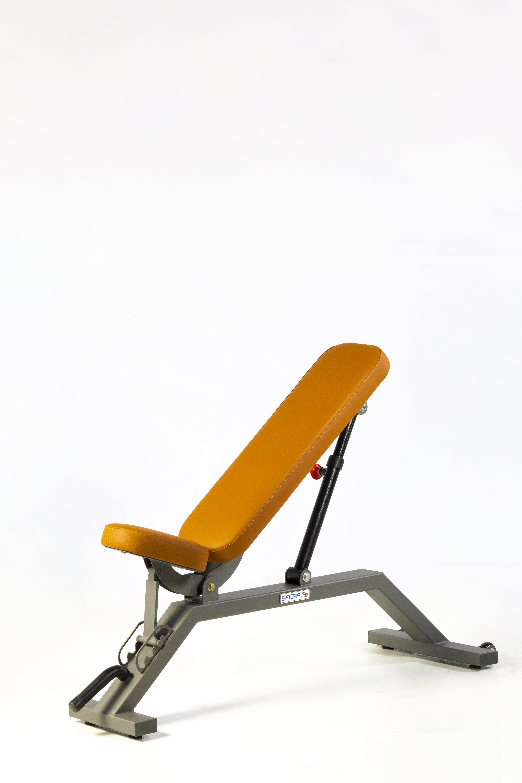 Sfera Gym