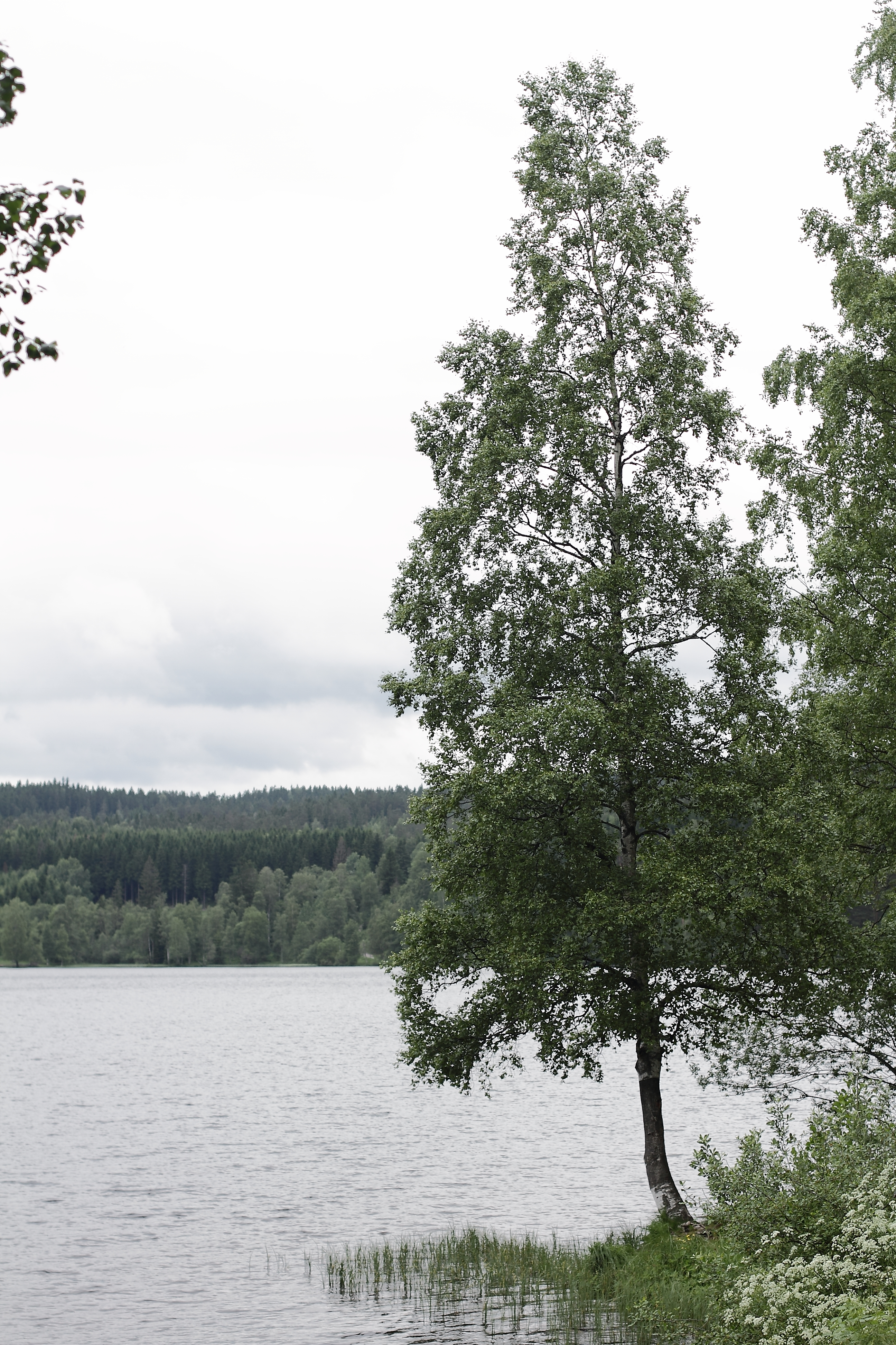 Oslo / Norway