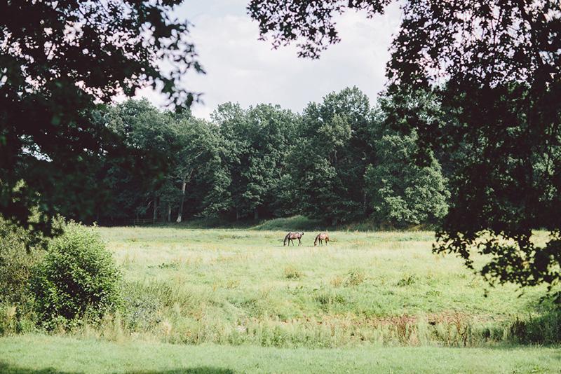 Campingpark Südheide, Umweltschutz, Natur. Ruhe, Erholung
