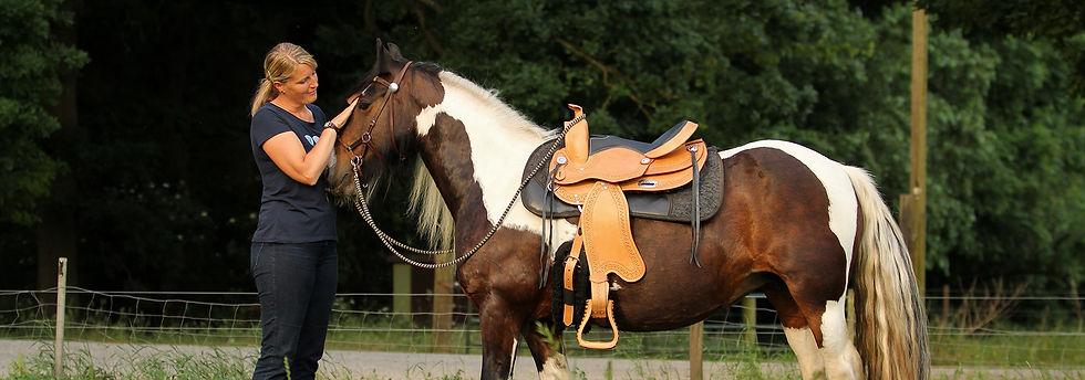 birkenhof, reiten, reithalle, reiturlaub, urlaub mit pferd, camping mit pferd, reiterhof, pferdehof, reiten für kinder, ausreiten, western reiten, urlaub auf dem ponyhof, campingurlaub mit kindern