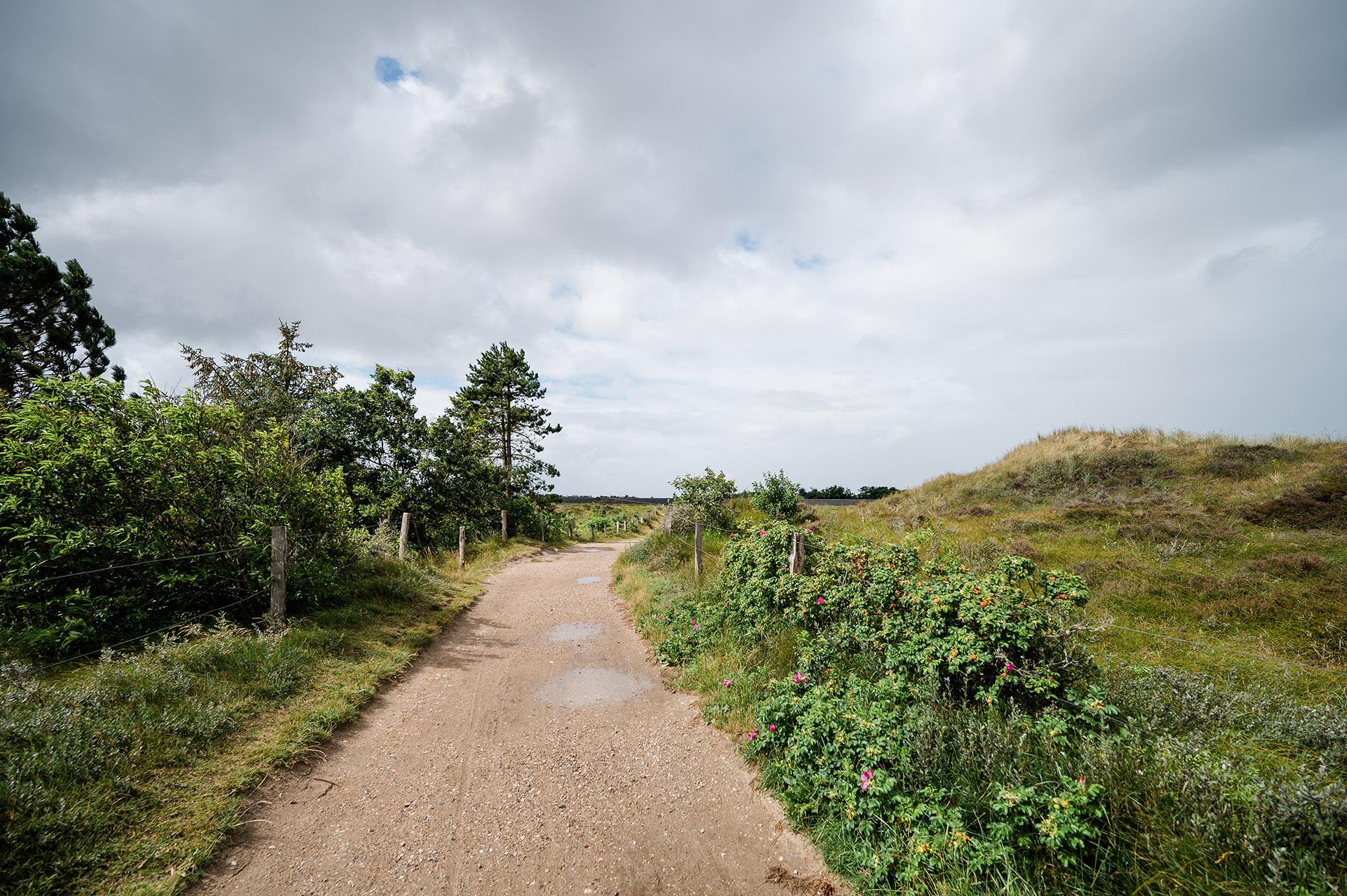Dünen von St. Peter Ording, Nordsee Landschaft, Campingurlaub in Nordfriesland, Nordseecamping zum S