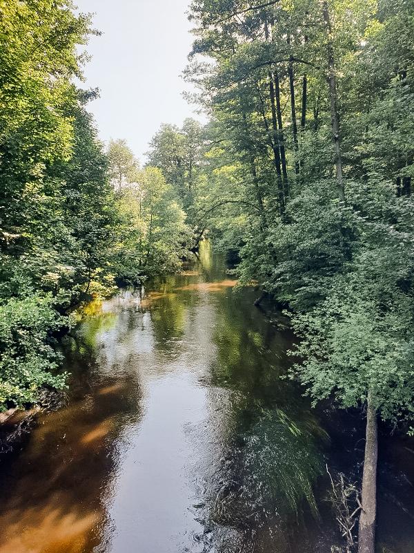 Campingpark Südheide, Ausflüge, Region, Örtze, Aller, Heidefluß