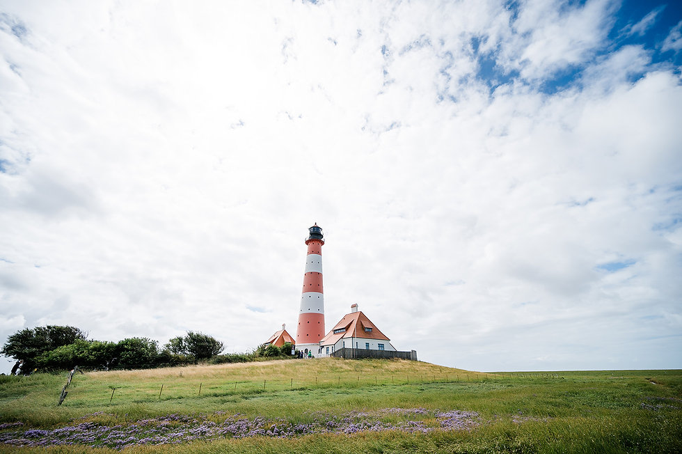 Nordseecamping_zum_Seehund_Westerheversa