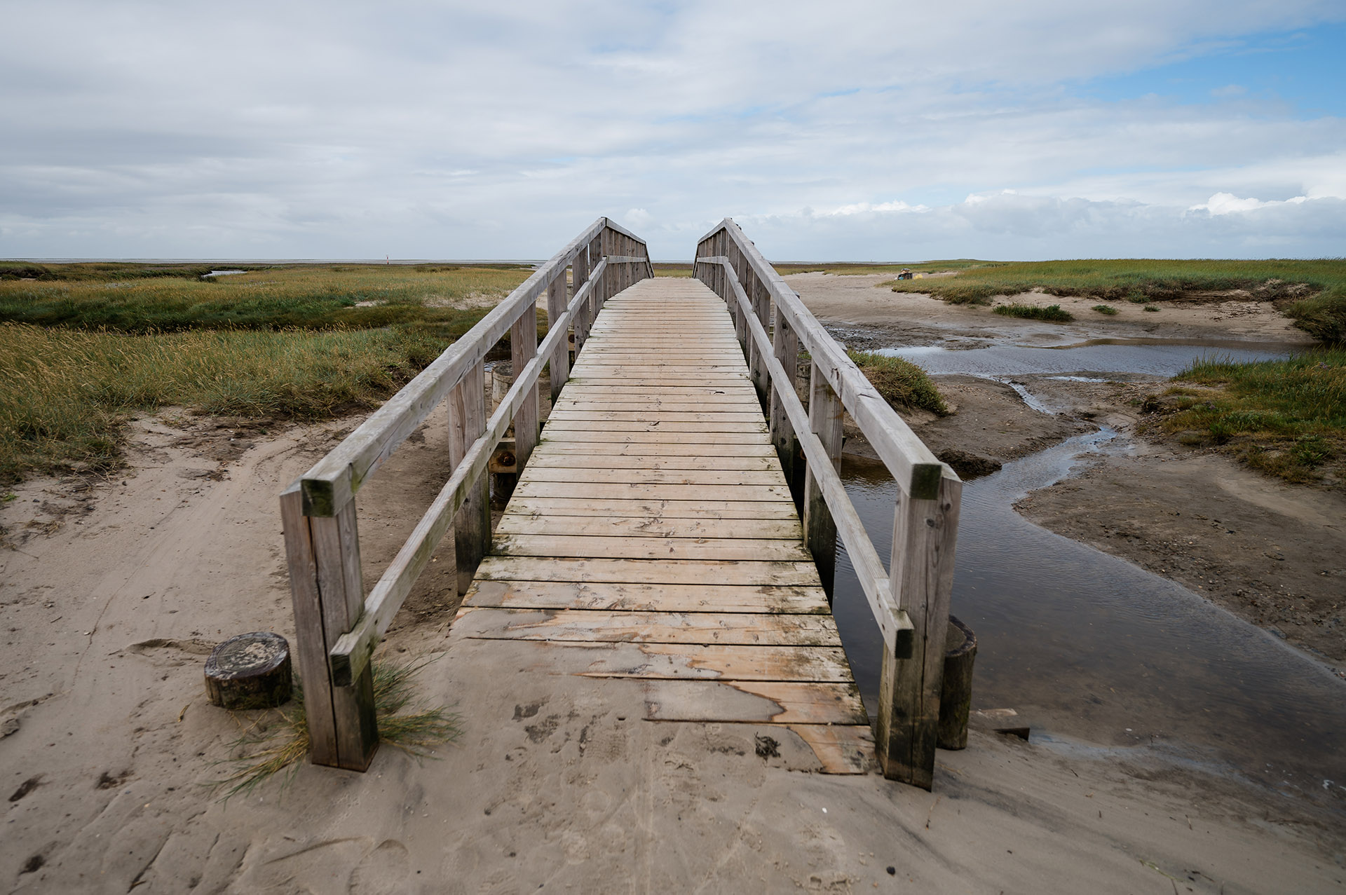 Dünen St. Peter Ording, Nordsee, Urlaub in Nordfriesland, Campingurlaub, Nordseecamping zum Seehund