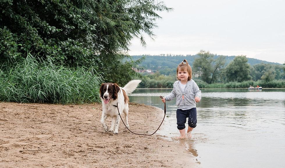 Campingpark kalletal, Urlaub mit Hund, Stemmer See, Familienurlaub, Fotowettbewerb, Gewinn, Campingwochenende