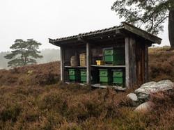 Heide, Bienenkörbe