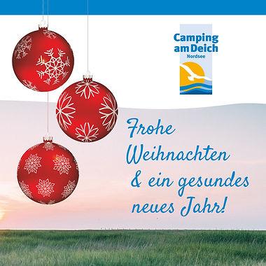 CaD_weihnachtskarte2.jpg