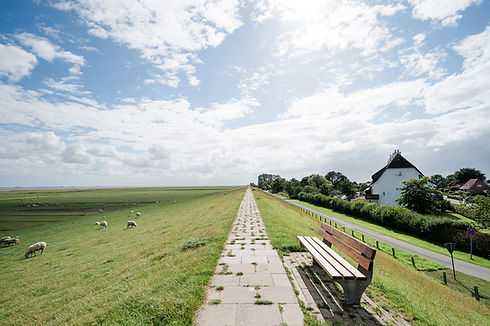 Nordseecamping_zum_Seehund_Nordstrand_03