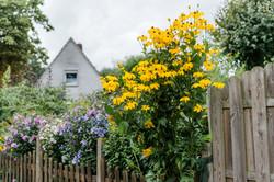Upleward, Dorfleben