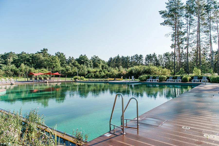 Naturschwimmteich Campingpark Südheide