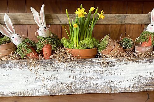 Carpenters Box with Tete Daffodils, Moss and Burlap Bunnies