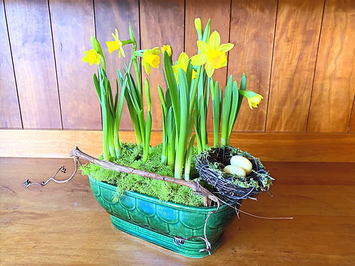 Emerald Green Vintage Container with Tete Daffodils and a Birds Nest