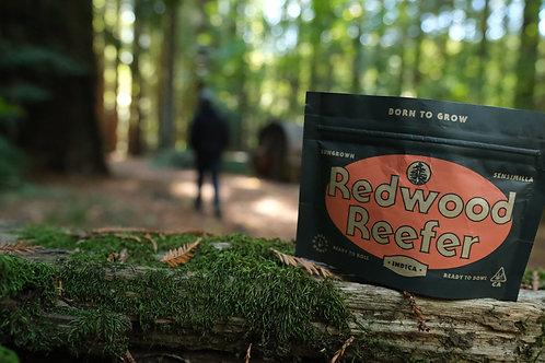 Redwood Reefer - Orange Fruity Pebbles (Hybrid)