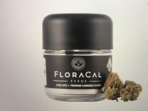 Animal Mints | Floracal