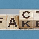 FactFake bkgnd.png