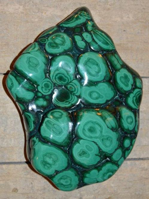 Malachite Lithophile Gard