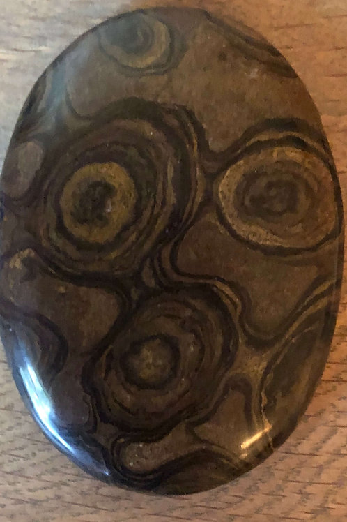 Stromatolite Lithophile Gard