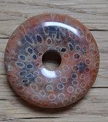Donut en corail fossile