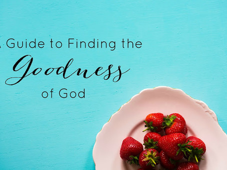 A Guide to Finding the Goodness of God