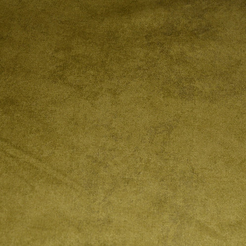 Olive Texture
