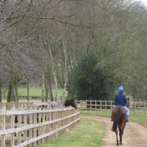 Bowstridge Farm 126.jpg
