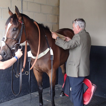 Exceeding Power saddling at Newbury 17 J