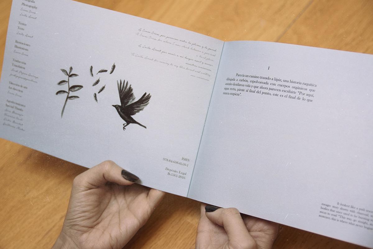 Corneilles - The Photobook