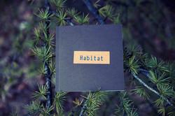 Habitat - Body & Landscape Awareness