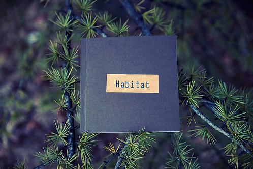 Habitat: Body & Landscape Awareness