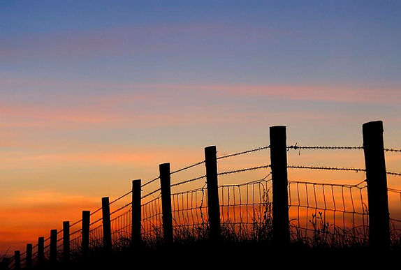 silhouette-of-barbed-wire-fence-ross-hod