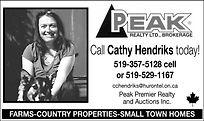Cathy Hendriks.jpg
