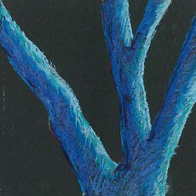 2003 cover.JPG
