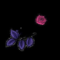 Collectionheader_Flora.png