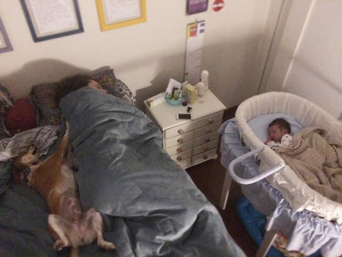 A rotina do bebê
