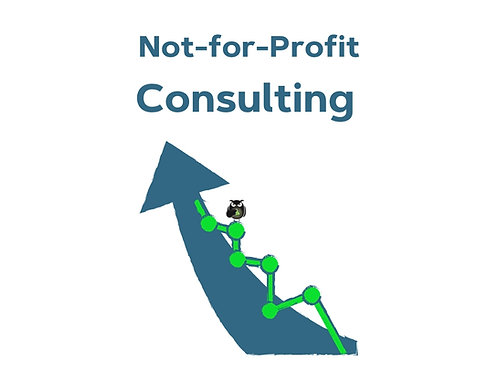 NFP Marketing Consulting