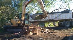 Demolition of Shed