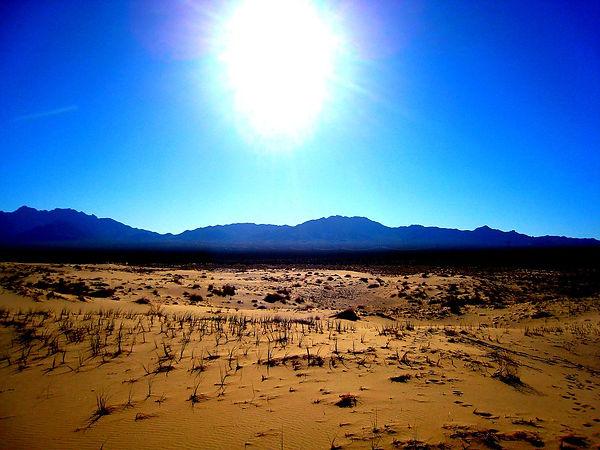 Alesa Desert.jpg