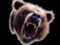 Bear Head.png