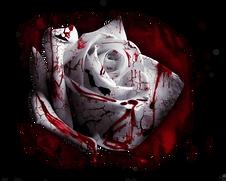 Alesa Rose.png