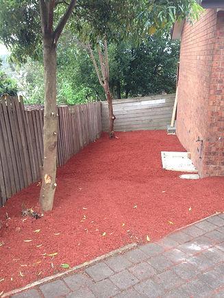 landscaping 1 after.jpg