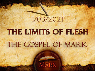 The Limits of Flesh