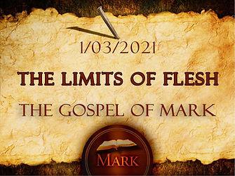 The Limits of Flesh - Image.jpg