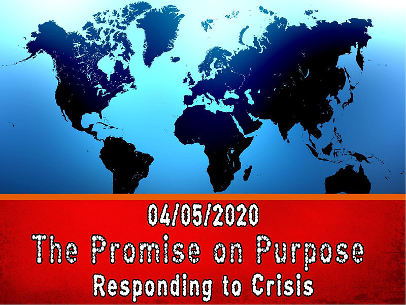 The Promise on Purpose - Image.jpg