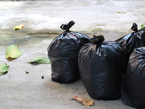 Image of two garbage bags by the curb.