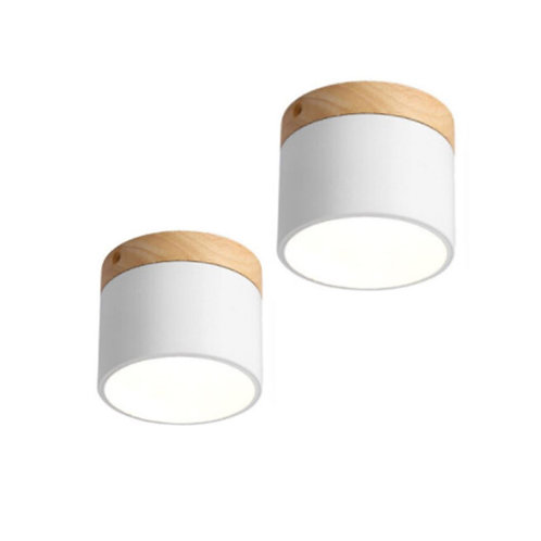 Ame Ceiling Lamp (White)