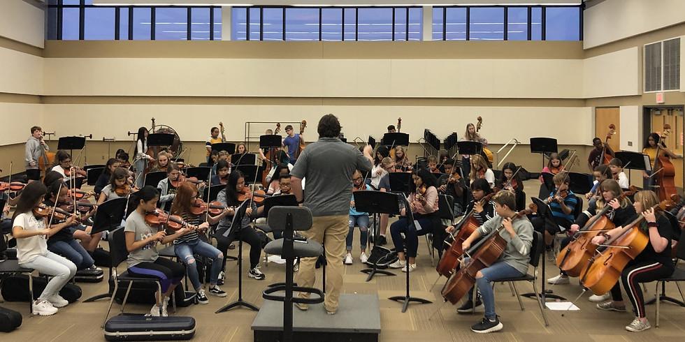 Summer Strings Academy