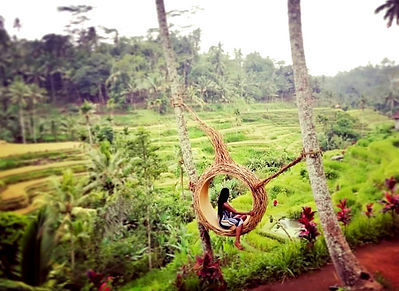 Ubud Bali Hanging Chair Basket3_edited.j