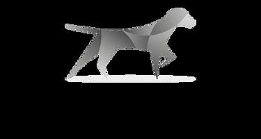 SteadPoint Insurance Logo