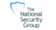 The National Security Group Logo